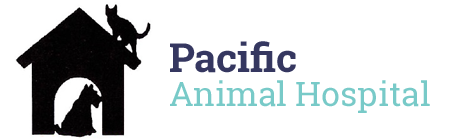 Veterinarians Pacific | Pacific Animal Hospital